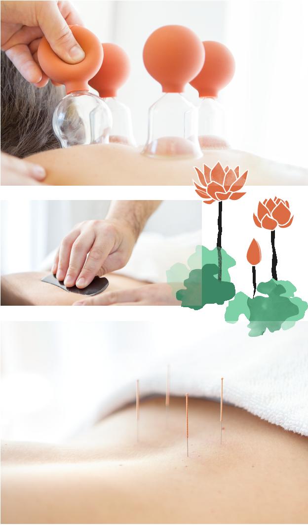 behandlungen wie guasha und akupunktur, lotusblüte